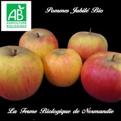 Pommes Jubilé bio 1 kilo