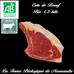 savoureuse cote de boeuf d'herbe bio poids 1,5 kilo en direct du producteur la ferme biologique de Normandie.
