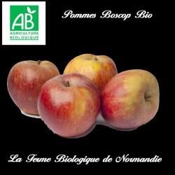 Pommes Boscop bio 1 kilo