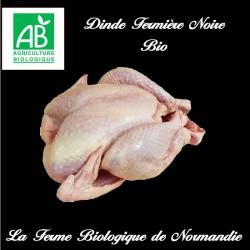 savoureuse dinde fermière noire bio 2,9 kilos à rotir.