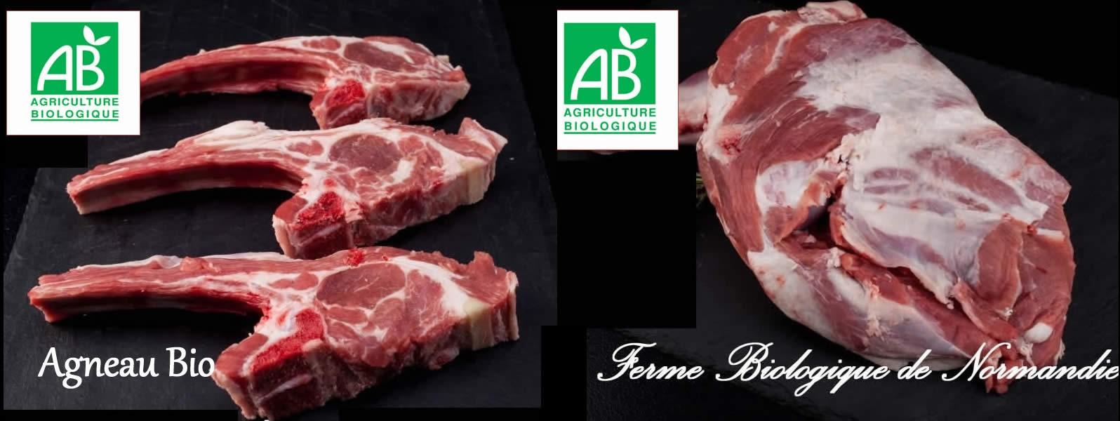Viande d'agneau fermier bio,  élevé en plein air, en liberté, en direct de la ferme biologique de Normandie.